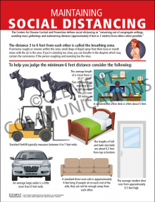 Maintaining Social Distancing Poster