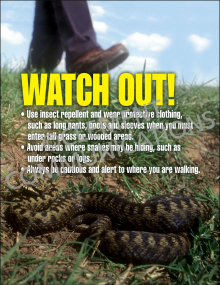 Watch Out-Snakes Poster