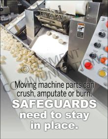 Safeguards Poster