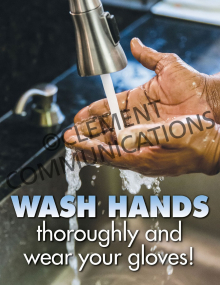 Food Safety - Wash Hands Poster