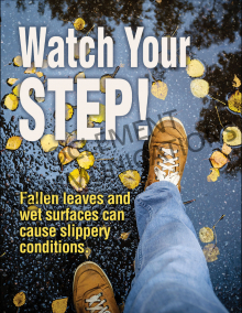 Watch Your Step Poster