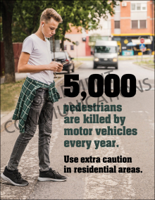 5000 Pedestrians Are Killed Poster