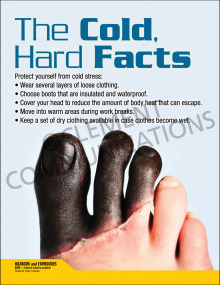 The Cold Hard Facts Poster