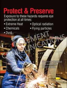 Protect and Preserve Poster