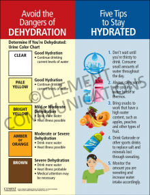 Dehydration-Hydration Infographic Poster