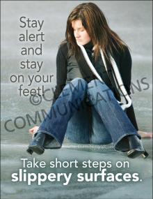 Winter Hazards - Short Steps - Poster