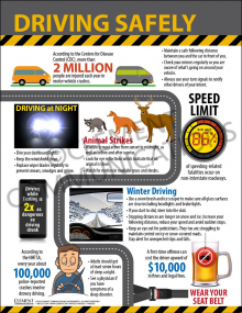 Safe Driving Infographic Poster™