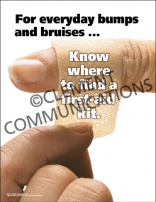 For Every Day Bumps and Bruises Poster