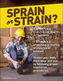 Sprain or Strain Poster