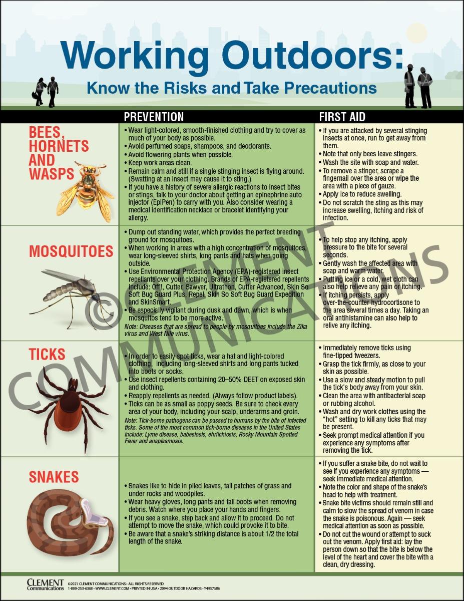 Outdoor Hazards, Bees, Ticks